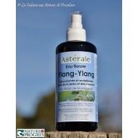 Hydrolat Ylang-Ylang (Cananga odorata) 200ml