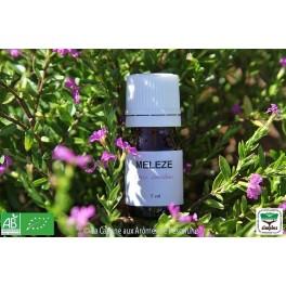 HE Mélèze (Larix decidua) 5ml