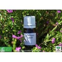 HE Origan vert (Origanum heracleoticum) 5ml