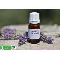 HE Lavande vraie sauvage bio (Lavandula angustifolia) 10ml