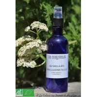 Hydrolat  Achillée Millefeuille (Achillea millefolium) 250ml