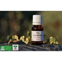 HE Pin sylvestre (Pinus silvestris) bio, 15ml
