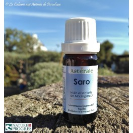 HE Saro (Cinnamosma fragrans) 10ml