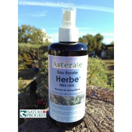 Hydrolat Herbe des Rois (Pterocaulon decurrens) 50ml