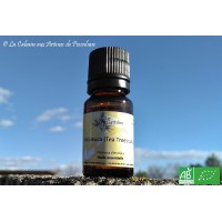 HE  Arbre à thé / Tea Tree (Melaleuca alternifolia) 10ml