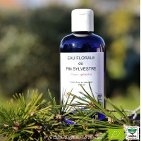 Hydrolat de Pin sylvestre bio, 200ml