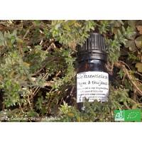 HE Thym thujanol bio (Thymus vulgaris) 5ml
