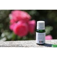 HE Lavande vraie bio (Lavandula angustifolia) 5ml